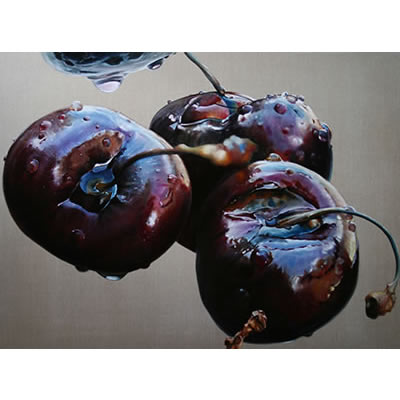 Black cherry II: 2009, Oil on Belgian Linen, 96 x 126cm