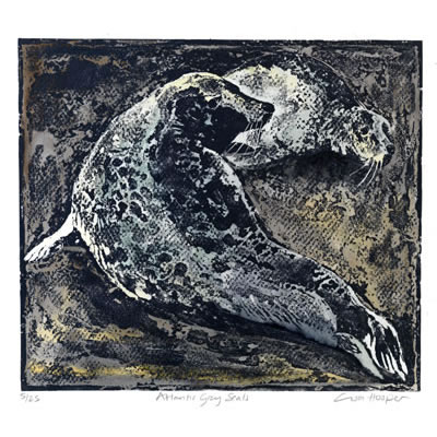 Atlantic Grey Seals, lino etching by Lisa Hooper
