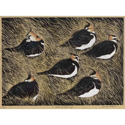 A Deceit of Lapwings, hand coloured linocut by Lisa Hooper