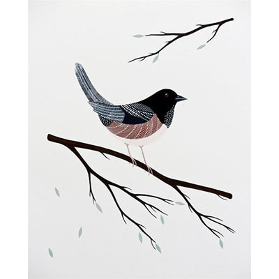 Eastern Towhee, Gouache and acrylic ink on paper
