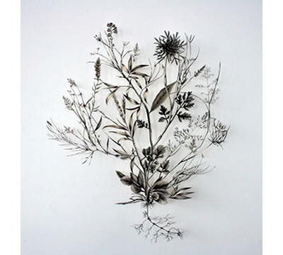 Soonest Mended, 2011, by Jo Coupe, photo: Jo Coupe. Antique botanical prints, archival tape, dissection pins. Image courtesy of the artist and Workplace Gallery