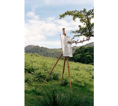 Hawthorn on Easel #1, 2005, by Tim Knowles, photo: Tim Knowles Ink on paper and C-type print © Tim Knowles