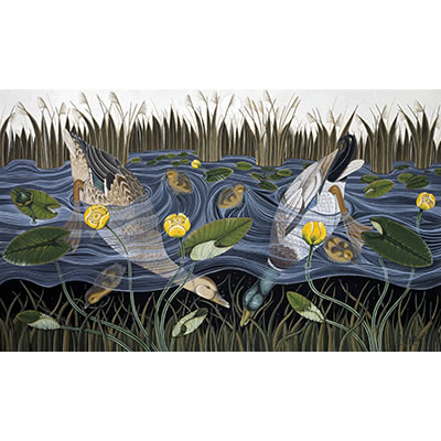 Ducks and Yellow Waterlilies