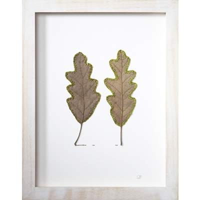 Connection (21.2 H x 16.7 W cm framed) oak leaves, cotton yarn Photo: Simon Cook