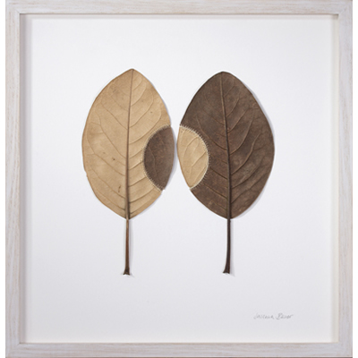Trans-Plant No.9 (35.8 H x 34.7 W cm framed) magnolia leaves, cotton yarn Photo: Simon Cook