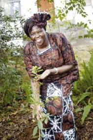Kenyan Nobel Peace Prize winner Professor Wangari Maathai holds a tree that she planted in the Newla