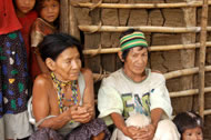 Guarani shaman and wife Photograph: Ghillean Prance