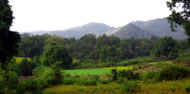 Panorama of the Niyamgiri landscape near to the village of Dangesarang. Photograph: Mark Heylar