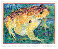 Toad by John Moat