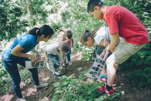 Nature education at Jubilee Farm
