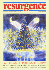 issue cover 191
