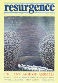 issue cover 192