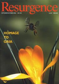 issue cover 202