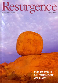 issue cover 206