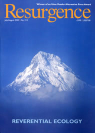issue cover 213