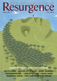 issue cover 236