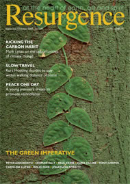 issue cover 244