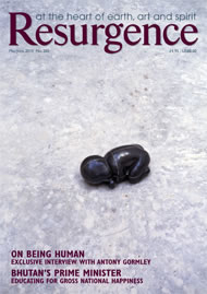 issue cover 260