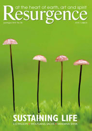 issue cover 261
