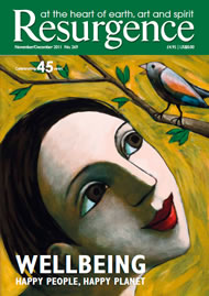 issue cover 269