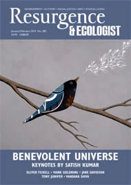 issue cover 282