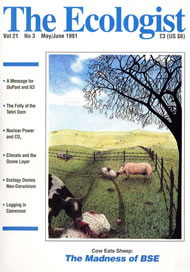 Cover of Ecologist issue 1991-05