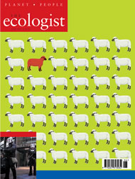 Cover of Ecologist issue 2003-06