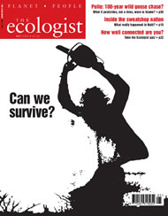 Cover of Ecologist issue 2004-05