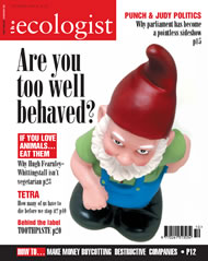 Cover of Ecologist issue 2004-10