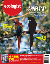 Cover of Ecologist issue 2005-05