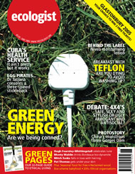 Cover of Ecologist issue 2005-06