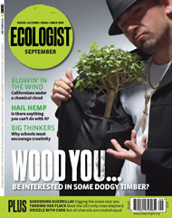 Cover of Ecologist issue 2008-09