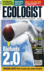 Cover of Ecologist issue 2009-01