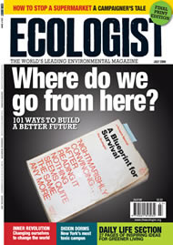 Cover of Ecologist issue 2009-06