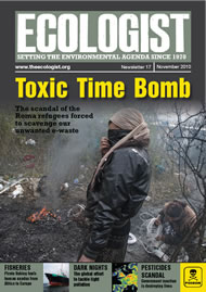 Cover of Ecologist issue 2010-11