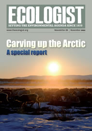 Cover of Ecologist issue 2011-11