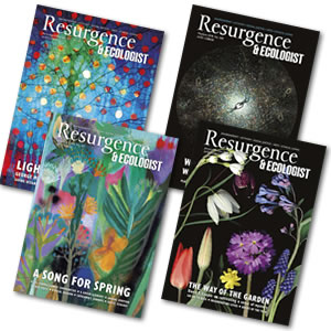 Christmas gifts from Resurgence