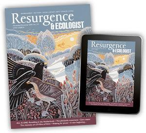 Give Resurgence as a gift this Christmas