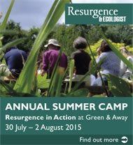 Resurgence Summer Camp 2015