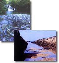Postcards (pack of 10 mixed)