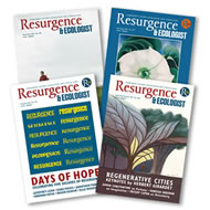5 copy lucky dip bundle of Resurgence magazine